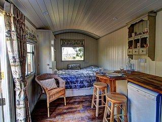 Shepherd's Hut - underfloor heating, dishwasher, full en suite facilities