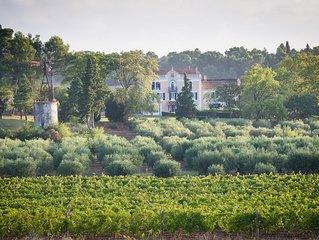 Chateau Canet - Ferien auf einem wunderschonen Weingut bei Carcassonne