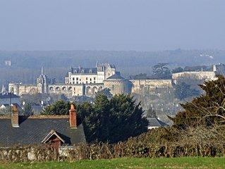 Lysalin grande maison au ceour des Chateaux de la Loire pour 8/10 pers.