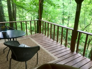 $120 a Day. RIGHT ON Clear Creek. Tiny Home! Overlooks 20ft. trout stream!