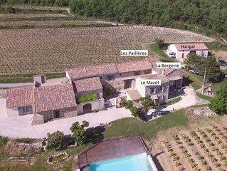 Mas provençal (3 habitations indépendantes) dans un vignoble