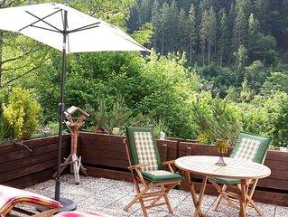 *** Sterne Fewo, grosse Terrasse im Sudhang mit Panoramablick in Rurseenahe