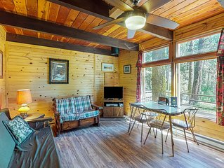 Authentic mountain cabin w/outdoor firepit & lovely views - dogs OK