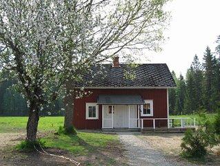 Luxe zweeds vakantiehuisje voor 5 tot 6 p. gelegen 20m van het meer .