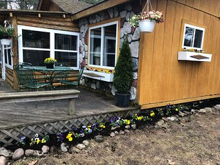 Cute and cozy completely remodeled Otsego Lake cabin! Golf, ski, shop Gaylord Mi