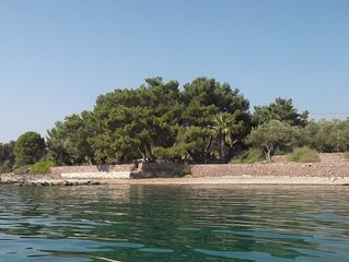 Villa  surrounded by 8000 m2 olive groove, under pine trees, on waterfront