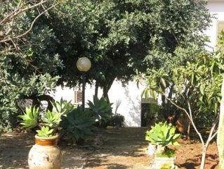 Meglio viverci che vederla in foto........villa con grande giardino per 8 person