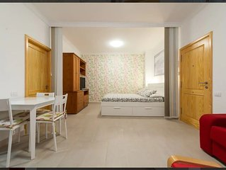 Las Canteras beach studio apartment 1BR 1BTH WiFi - best position of the beach