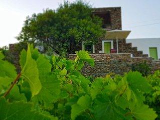 Cycladic vineyard house