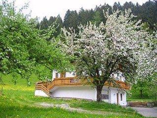 Neues Chalet, eingebettet in eine idyllische Landschaft direkt am Waldrand