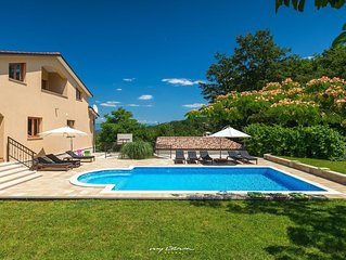 Charming villa with private pool in Pazin