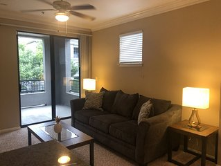 Spacious Med Center Apt on Kirby Near MD Anderson