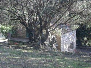 Maison traditionnelle de charme, au calme dans une oliveraie. 10 mn des plages