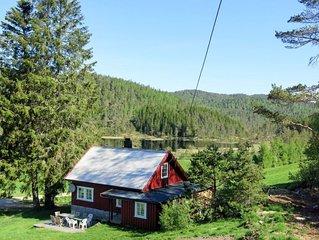 Ferienhaus Abuslandheia (SOO017) in Evje - 8 Personen, 3 Schlafzimmer