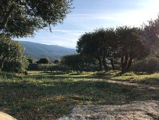 Villa au pied du Mont Ventoux