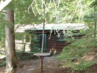 Pet friendly Adirondack cabin on Kiwassa Lake, 3 miles from Saranac Lake