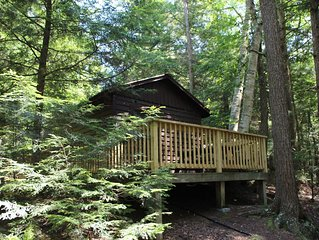Cozy pet friendly cabin for two - 3 miles from Saranac Lake - access to lake