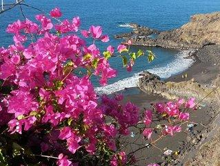 Fewo mit tollem Meer- und Teide-Blick, mit 2 Terrassen, Pool und schönen Gärten