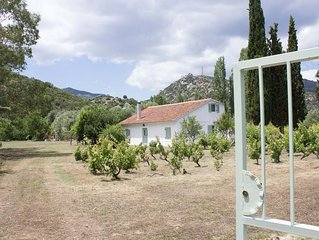 A cottage hidden in vine and olive grooves