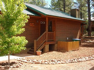 Peaceful Pines Cabin! Fenced Yard for Dogs! Near Lakes & Hiking!