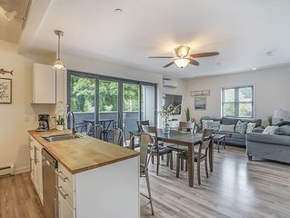 Condo with Rooftop View in Downtown Saugatuck by the Park. Walk Everywhere!