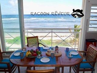 Le Racoon rêveur, appartement sur la plage avec vue mer d'exception
