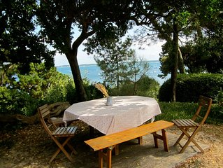 House with private access to the sea and private dock – Cap Ferret