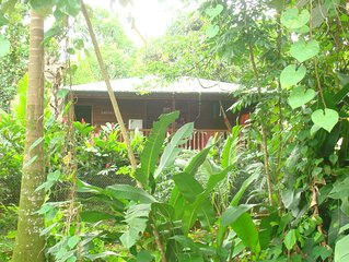 GWAN KAZ bungalow pour 2 à 4 personnes Gîte tarare