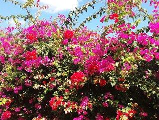 villa romantique 7mins de la plage du casella parc ideal pour couple&famille,etc