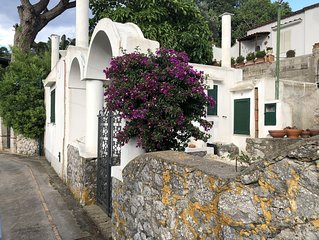 Villa Tenerezza/Capri /typical villa/garden and terrace/sea view