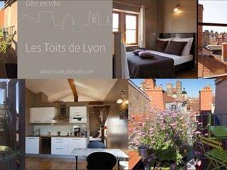 Centre de Lyon, loft unique avec terrasse et vue a 360°