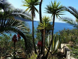 Cargèse site exceptionnel sur mer, grand jardin arboré - plage à 50 m