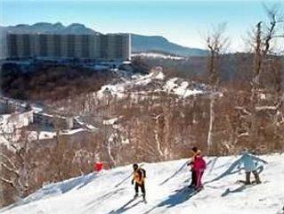 Mile High Views (5281 Feet)-Sugar~Top~ Condo-Walk to Ski Slope