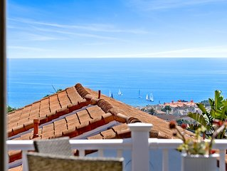 DANA POINT! HARBOR AND OCEAN VIEW LUXURY HOUSE!