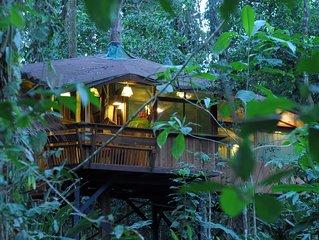The Tree House,  at Tree House Lodge in Punta Uva