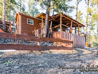 Charlie Cabin:'Skiers must have and Summer's great getaway' With hot tub.