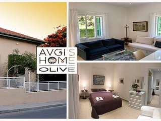 'OLIVE GARDEN APT' at 'AVGI'S HOME' -  at the Heart of Old Limassol