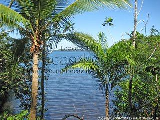 Secluded Forest Hideaway on the Ocean with 60+ Acres of Old Growth Rainforest!