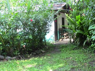Quaint Little Cabina Located near all Services,  Nestled in a Jungle Environment