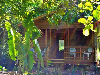 Iguana Roost, A 2 Bedroomed Self Catering Tropical Paradise in San Ignacio