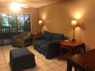 Beautiful Condo 4-6 month rental only