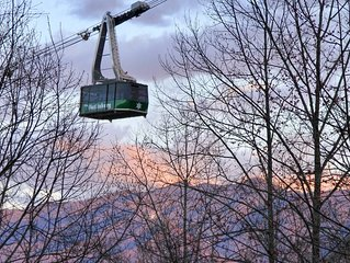 Watch the trams glide by your mountain views