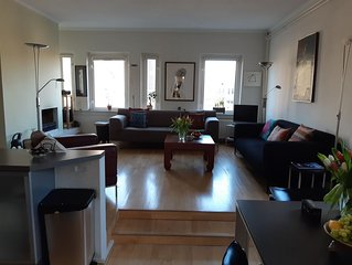 Beautiful, Spacious, Sunny, 1 Bd, Apt in City Ctr. (w. Lift & Fireplace)