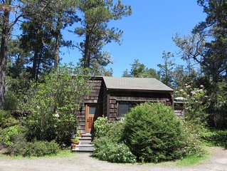 Charming CasparCottage Walk to the Waterfall in Russian Gulch State Park
