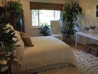 Comfortable, spacious room in Downtown Lodi