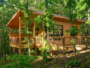 Tiny 'Arrowhead' cabin minutes from Asheville and Weaverville!