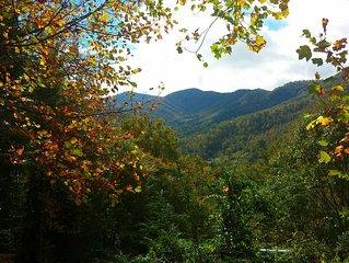 3BD/3BA Magnificent Views of Balsam Mountain
