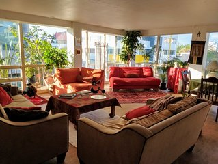 TRENDY AND COZY APARTMENT IN CONDESA