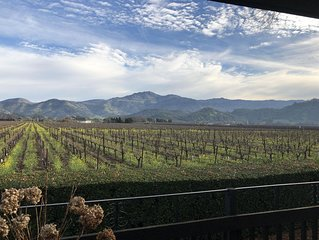 Vineyard Views & Great Location to Downtown Rental Permit #TOYC18228