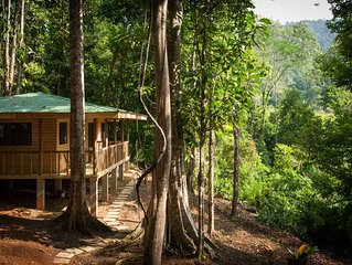 Jungle cabin with mountain valley view, private road and river, 4WD required!